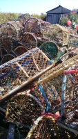 Pile of multi-coloured lobster pots in front of shed