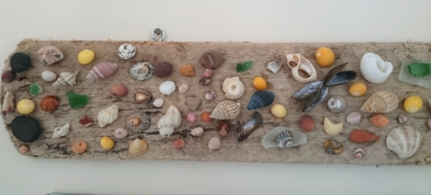 driftwood-decorated-with-shells-and-sea-glass-on-wall