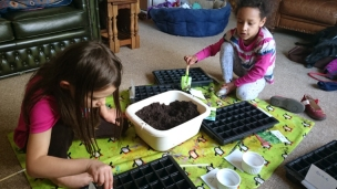 Two girls filling seed trays with compost