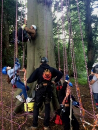 man-assisting-children-with-climbing-ropes-at-bottom-of-tree1