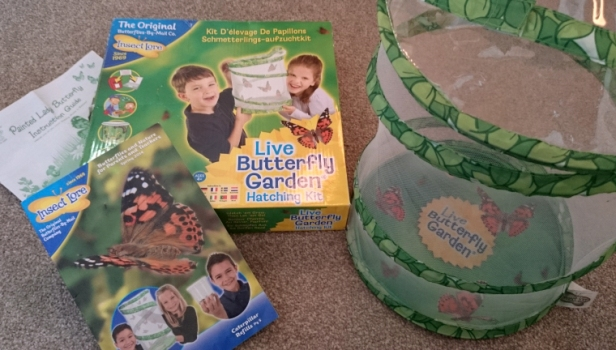 butterfly-garden-with-mesh-butterfly-home-box-and-instructions
