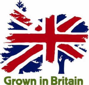 growninbritain banner showing tree silhouettes with Union flag superimposed on top