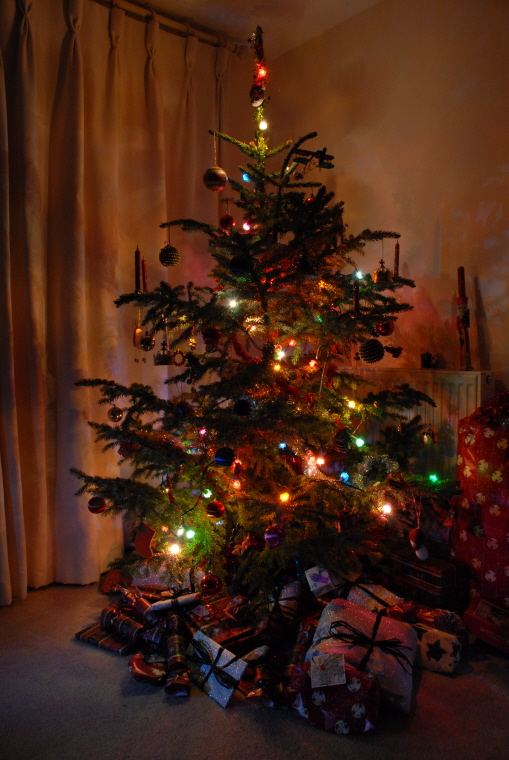 indoor-christmas-tree-with-atmospheric-sparkling-lights-and-presents-beneath