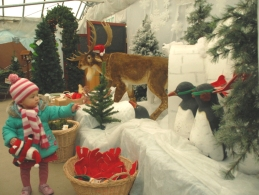toddler-pointing-at-reindeer-and-penguin-display-in-christmas-tree-shop