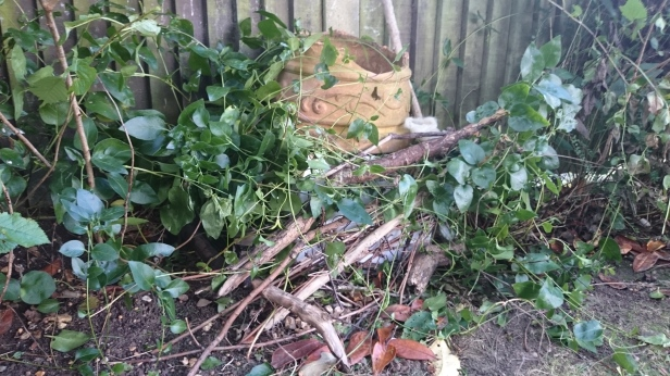 Pile of leaves and sticks by fence with broken plant pot