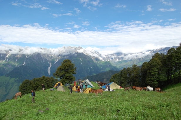 hillside-campsite-with-donkeys-and-tents-in-front-of-snow-capped-mountain-backdrop-full-size