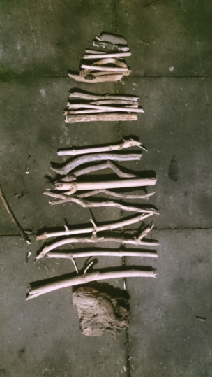 pieces-of-driftwood-sticks-layed-on-ground-like-christmas-tree