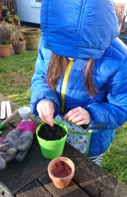 girl-in-blue-coat-potting-seeds-at-table