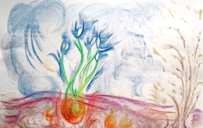 crayon-drawing-of-snowdrop-bulbs-and-buds-of-trees