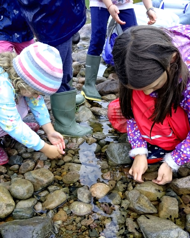 Children catching tadpoles amongst rocks in a stream