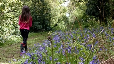 Girl walking on path through bluebell wood