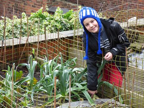 Boy in veg plot