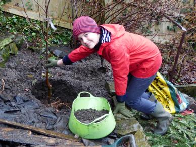 Boy planting sapling in hole in soil