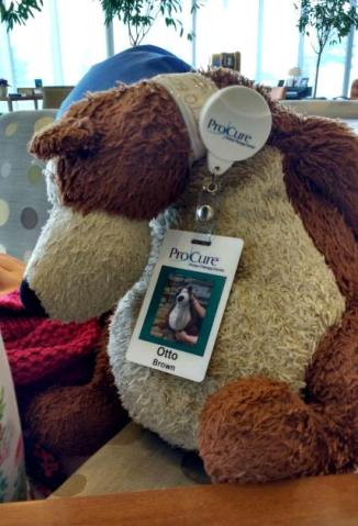 Teddy bear wearing ProCure ID badge