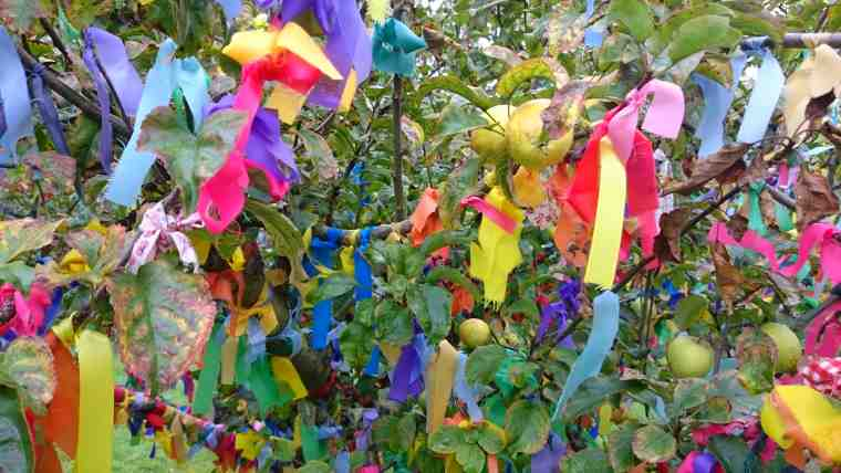 Multicoloured ribbons hanging in apple tree