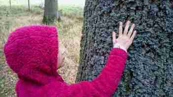 Image of girl in purple fleece with hand on trunk of tree covered in lichen