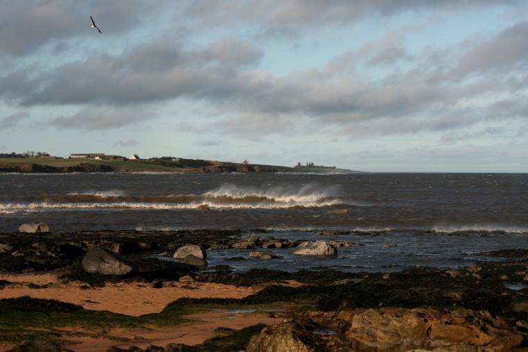 Image of seabird flying in stormy sky over waves with distant castle in background