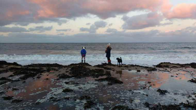 Image of woman, girl and dog in woolly hats and coats standing on seaweed-covered sand at sunset with waves and ocean in background
