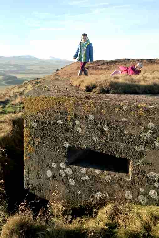 Image of child in blue coat standing and child in pink coat rolling on grassy roof of WWII pillbox with hills in background