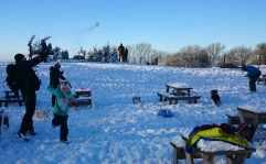 Image of man throwing snowball with people, snow, a dog and blue sky in background