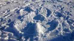 Image of snow angel body shape in snow