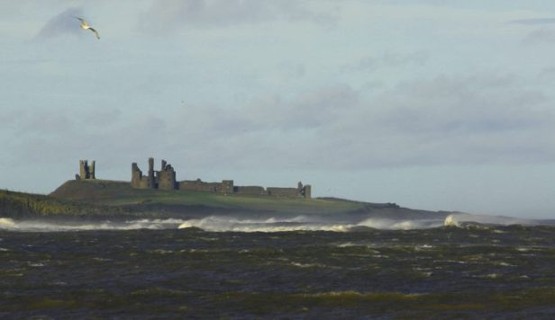 Image 2 of Dunstanburgh castle from the south with choppy waves in front and seagull in air