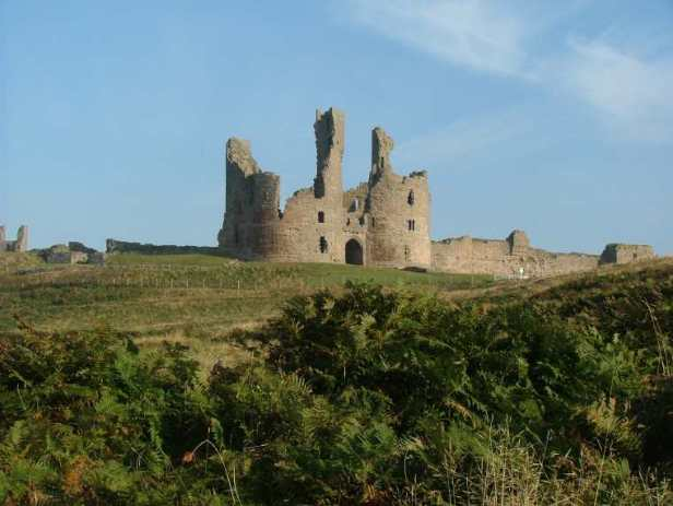Image of ruined grey stone Dunstanburgh castle on hill with fern and brambles in foreground and blue sky